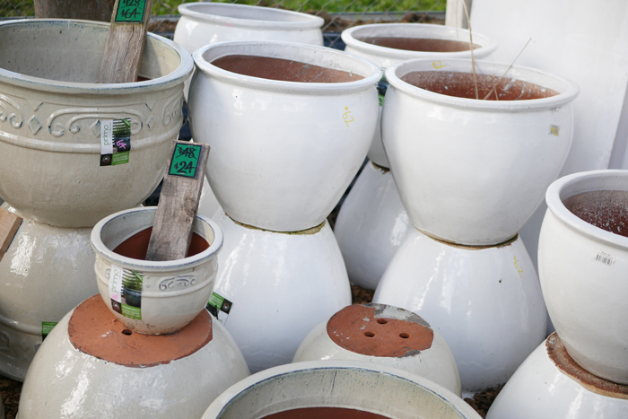 pots-for-herbs-health-coach-army